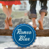 Romeo Blue Vintage Book Review summer reading