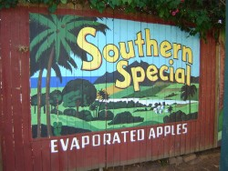 southern special mural vintage backyard